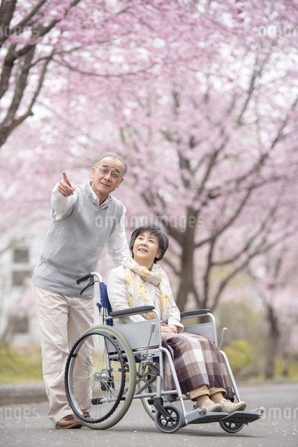 車椅子で散歩するシニア夫婦の写真素材 [FYI04558377]