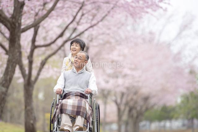 車椅子で散歩するシニア夫婦の写真素材 [FYI04558378]