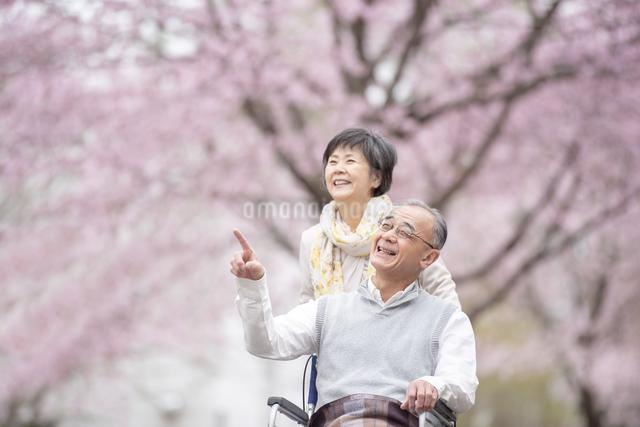 車椅子で散歩するシニア夫婦の写真素材 [FYI04558382]