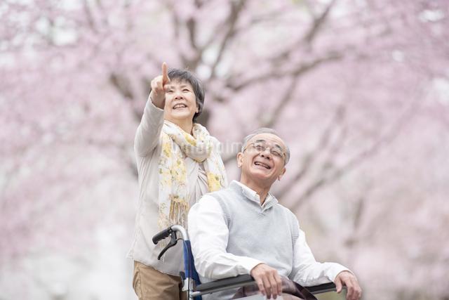 車椅子で散歩するシニア夫婦の写真素材 [FYI04558383]