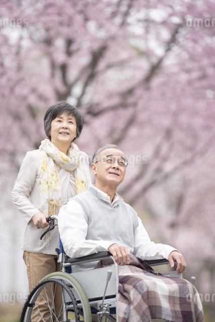 車椅子で散歩するシニア夫婦の写真素材 [FYI04558384]