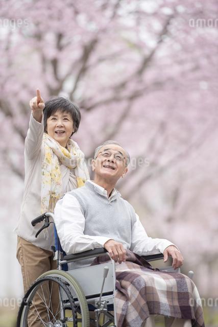 車椅子で散歩するシニア夫婦の写真素材 [FYI04558385]