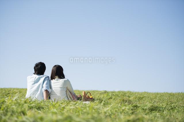 草原でピクニックをするカップルの後ろ姿の写真素材 [FYI04558527]