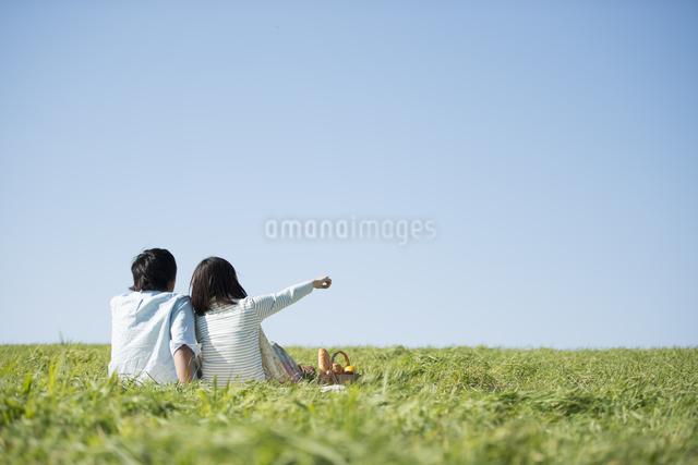 草原でピクニックをするカップルの後ろ姿の写真素材 [FYI04558532]