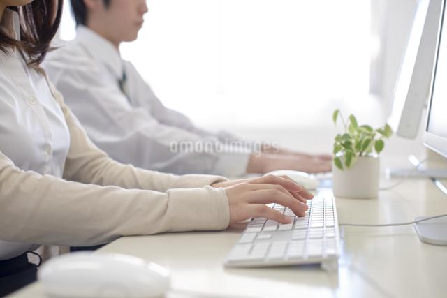 パソコン入力するビジネスマンの手元の写真素材 [FYI04558706]