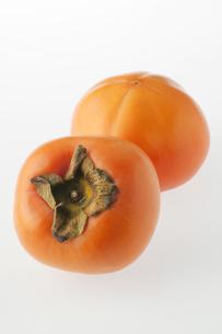 柿の写真素材 [FYI04559120]