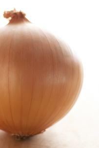 玉ねぎの写真素材 [FYI04559182]