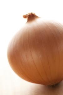 玉ねぎの写真素材 [FYI04559185]