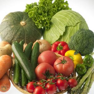 野菜の集合の写真素材 [FYI04559333]