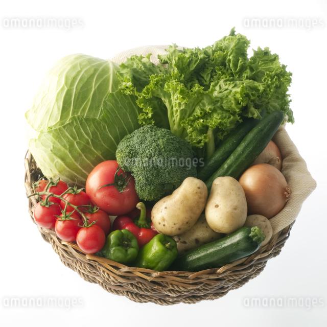 野菜の集合の写真素材 [FYI04559347]