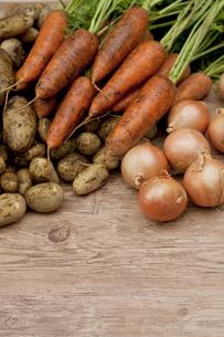 収穫した野菜の写真素材 [FYI04559397]