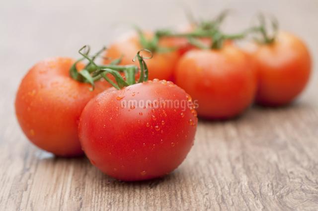 枝付きのミニトマトの写真素材 [FYI04559429]