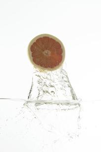 飛び出すピンクグレープフルーツの写真素材 [FYI04559642]