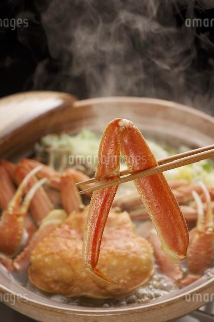 かに鍋の写真素材 [FYI04559789]