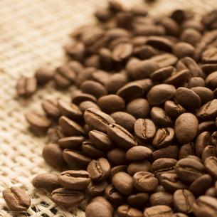 コーヒー豆の写真素材 [FYI04559856]