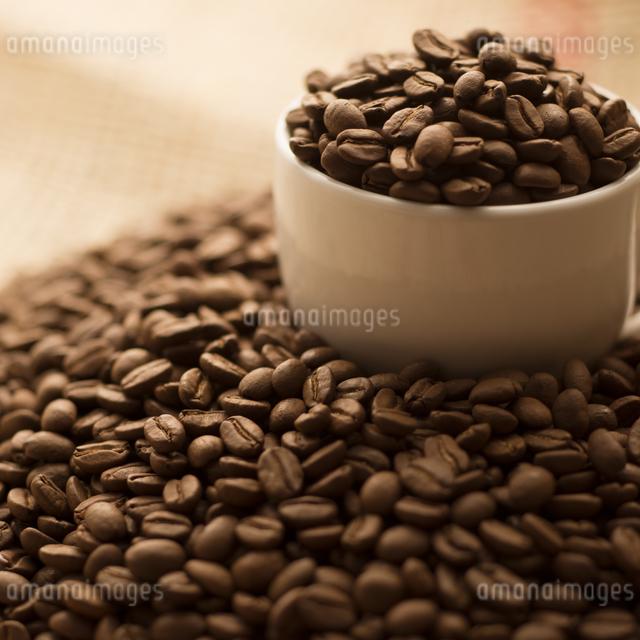 コーヒーカップに入ったコーヒー豆の写真素材 [FYI04559859]