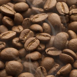 コーヒー豆の写真素材 [FYI04559862]