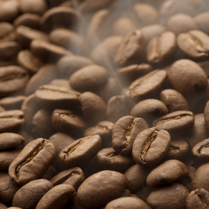 コーヒー豆の写真素材 [FYI04559863]