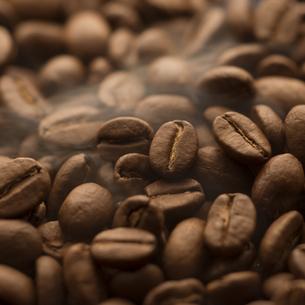 コーヒー豆の写真素材 [FYI04559866]