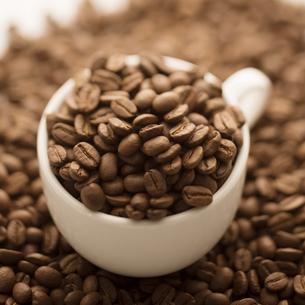 コーヒーカップに入ったコーヒー豆の写真素材 [FYI04559872]