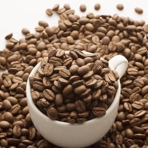コーヒーカップに入ったコーヒー豆の写真素材 [FYI04559875]