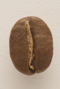 コーヒー豆の写真素材 [FYI04559884]