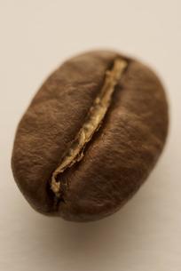 コーヒー豆の写真素材 [FYI04559885]