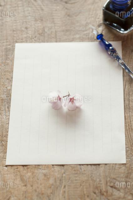 桜と便箋の写真素材 [FYI04559926]