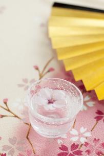おちょこと桜の写真素材 [FYI04559930]
