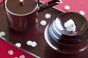 桜とおとその写真素材 [FYI04559940]