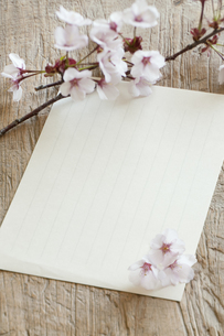 桜と便箋の写真素材 [FYI04559952]