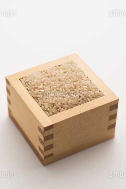 玄米の写真素材 [FYI04560119]