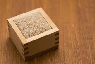 玄米の写真素材 [FYI04560123]