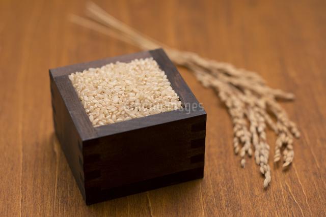 玄米と稲穂の写真素材 [FYI04560126]