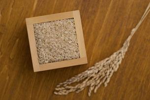 玄米と稲穂の写真素材 [FYI04560132]