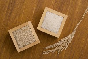 白米と玄米と稲穂の写真素材 [FYI04560134]
