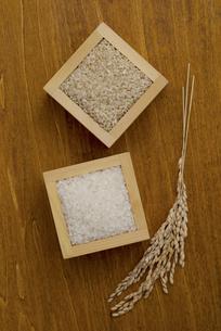白米と玄米と稲穂の写真素材 [FYI04560135]