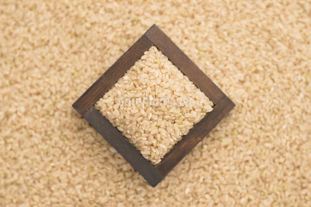 玄米の写真素材 [FYI04560140]