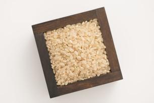玄米の写真素材 [FYI04560145]