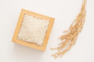 白米と稲穂の写真素材 [FYI04560147]