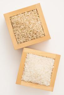 白米と玄米の写真素材 [FYI04560148]