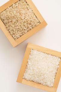 白米と玄米の写真素材 [FYI04560149]