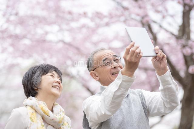 タブレットPCで撮影をするシニア夫婦の写真素材 [FYI04560500]