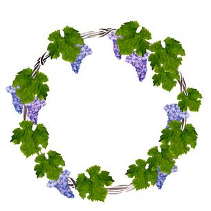 葡萄の円形リースのイラスト素材 [FYI04560922]
