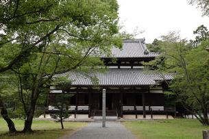根来寺 大伝法堂の写真素材 [FYI04560934]