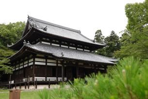 根来寺 大伝法堂の写真素材 [FYI04560936]