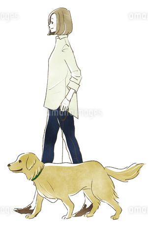 犬の散歩をする女性のイラスト素材 [FYI04561072]