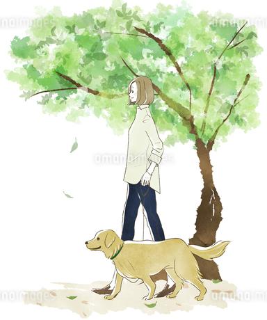 犬の散歩をする女性-新緑のイラスト素材 [FYI04561074]