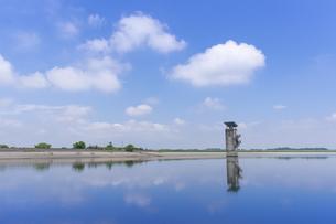 夏の渡良瀬遊水地の写真素材 [FYI04561235]