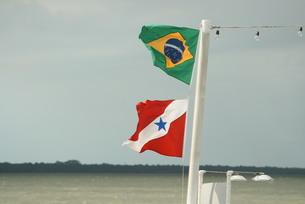 風になびくブラジル国旗とパラー州旗の写真素材 [FYI04561266]